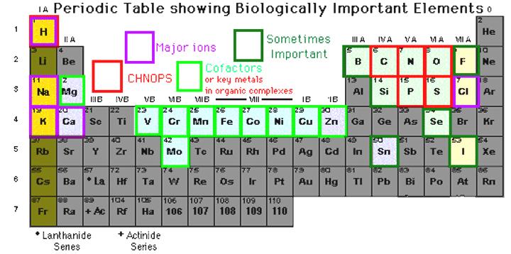 New Arsenic Periodic Table Family Name