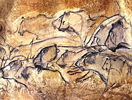 Lions, Chauvet
